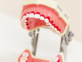 TBI (歯磨き方法の説明)